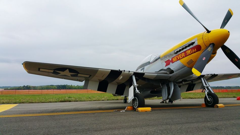 Ww2warbirds Vintage Hanging Out Awsome Beutiful  Inlove♥ Check This Out Taking Photos Enjoying Life