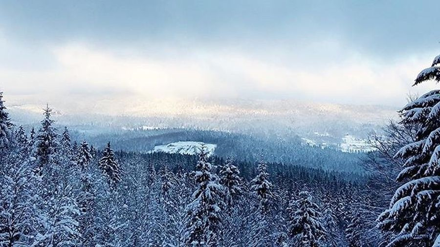 Winter Trip Travel Discover  Explore Snow Frost Mountain Trees Clouds Cloudporn Beautiful Nature World View Landscape Sudety Gory ❄ ☁