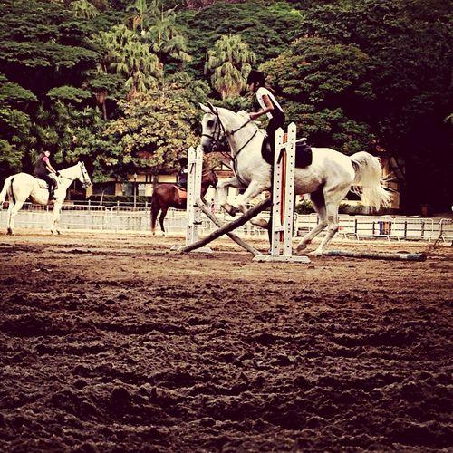 Saída Fotográfica Treinando Aula De Equitação