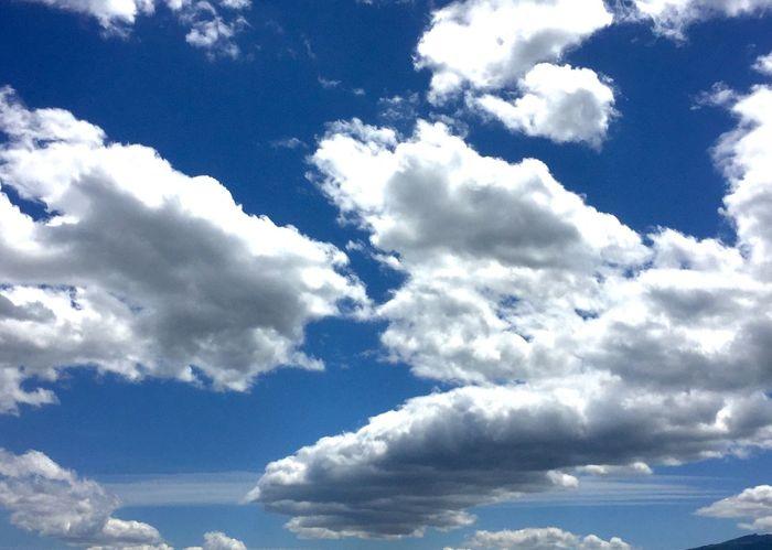 おちゅかれさま(≧◡≦) 今日は 青空(*˘︶˘*)♡♡雲💭は 大忙し💦 青空 イマソラ 笑顔 繋がるソラ キミに届け Blue Sky Smile Natural_love Natural Beauty The Evening Sky Happiness With You Happyday