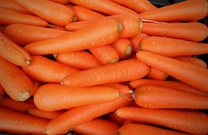 Healthy Eating Freshness Lifestyles Vegetable Carrot Orange Color Close-up