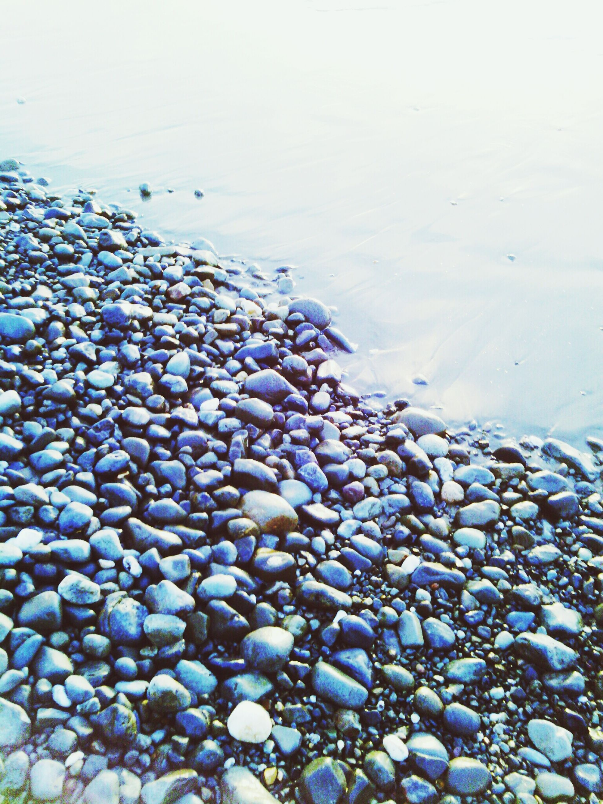 water, beach, pebble, stone - object, abundance, shore, sea, high angle view, nature, large group of objects, seashell, animal themes, tranquility, sand, rock - object, day, no people, stone, outdoors