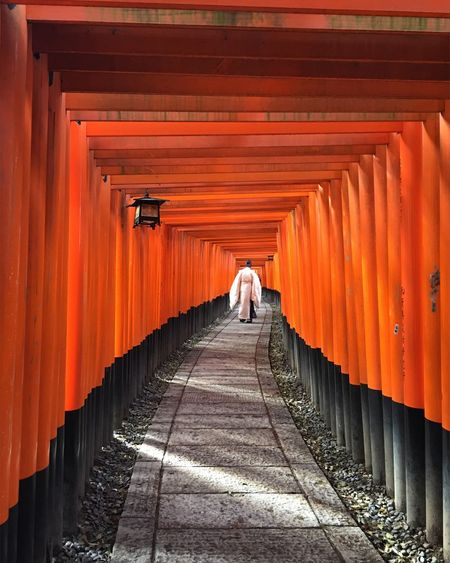 Rear view of man walking at inari shrine