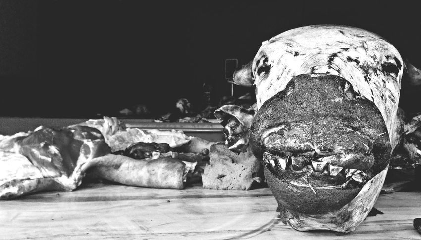 A buffalo head being displayed in a local meat shop Appetite Blackandwhite Meat Shop Meat! Meat! Meat! PhotoNepal Taking Photos IPhoneography Street Photography Nepal The EyeEm Facebook Cover Challenge My Best Photo 2014