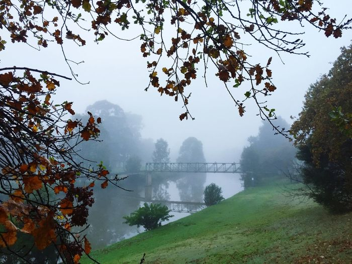 View of bridge over river in foggy weather