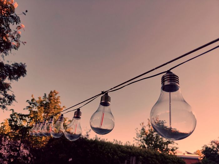 Low angle view of light bulbs hanging from tree against sky