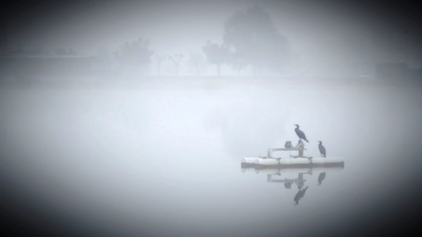 Fog Smog Weather Outdoors Nature No People Water Scenics Beauty In Nature Manresa Parc De L'Agulla