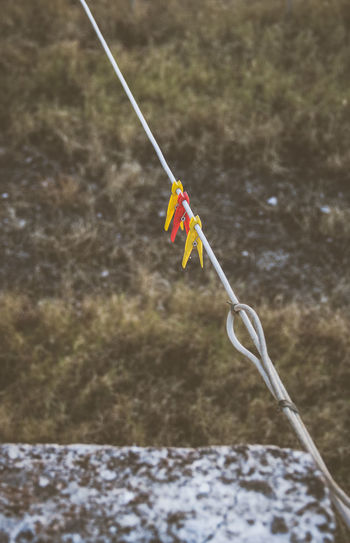 Day No People Close-up Hanging Rope Clothesline Field Selective Focus Clip Vintage Colourless Vignette Cold And Sad Outdoors Autumn
