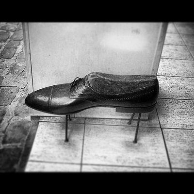 Mersin ÇARŞI Shoes Temmuz lion like man instamood instagramturkiye instalike instagood like4spam zarif follow