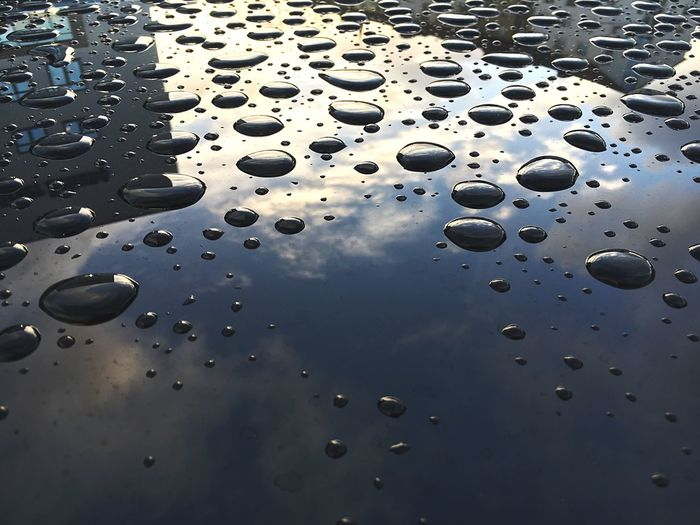 Close-up of water drops on car hood