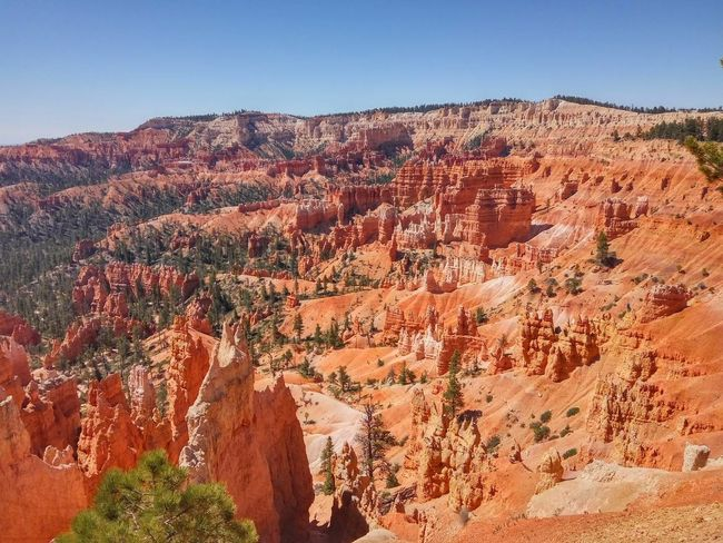 Bryce Canyon Red Cliffs Climbing Erosion Rock - Object Rock Formation Canyon Geology Nature Sky Desert Rock Hoodoo Mountain Arid Climate Cliff Tranquility Travel Destinations Clear Sky No People Tranquil Scene Outdoors Day Scenics Beauty In Nature Physical Geography Landscape