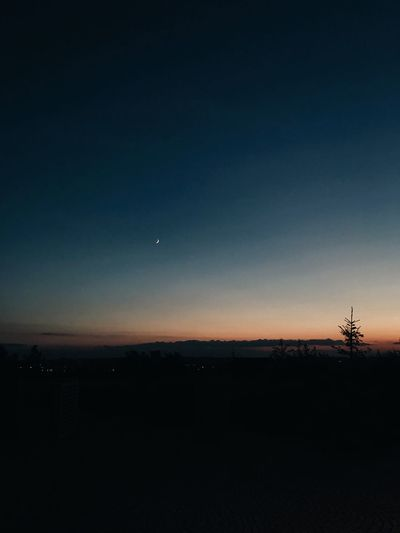 Tranquil Scene Scenics - Nature Landscape No People Outdoors Sunset Nature Plant Night Tree