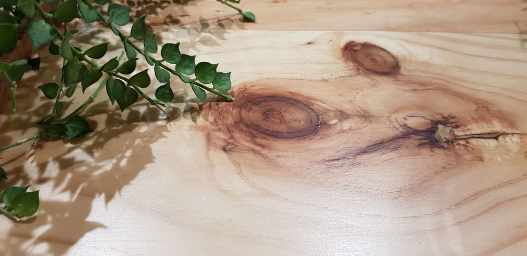 Table Surface Wood - Material Close-up Leaves Leaf Wooden