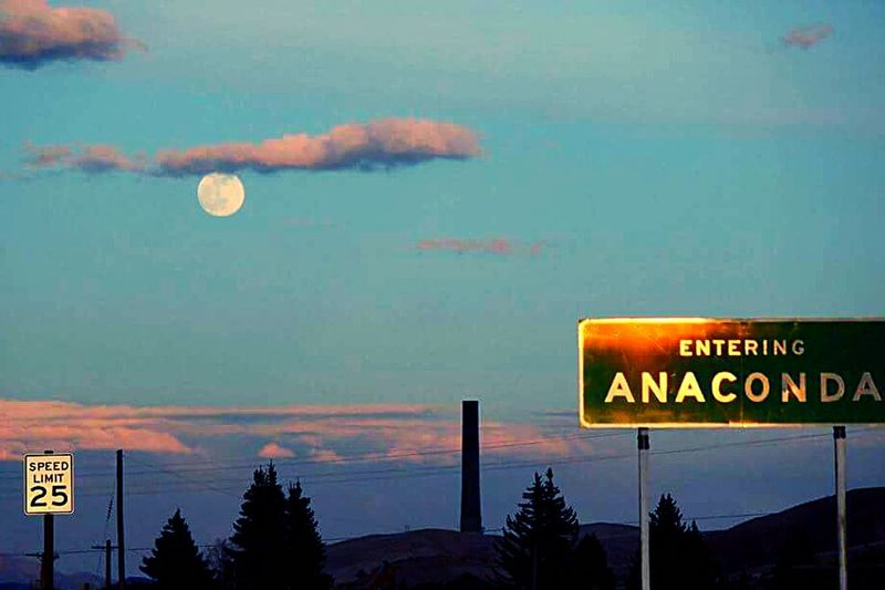 Anaconda MT