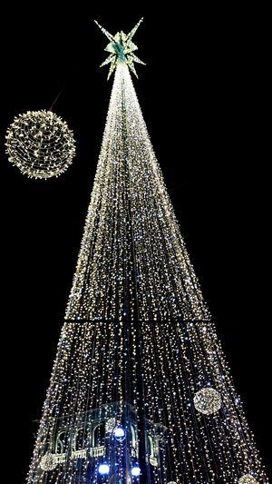 Walking Around Christmas Time Christmas Lights Christmas Tree