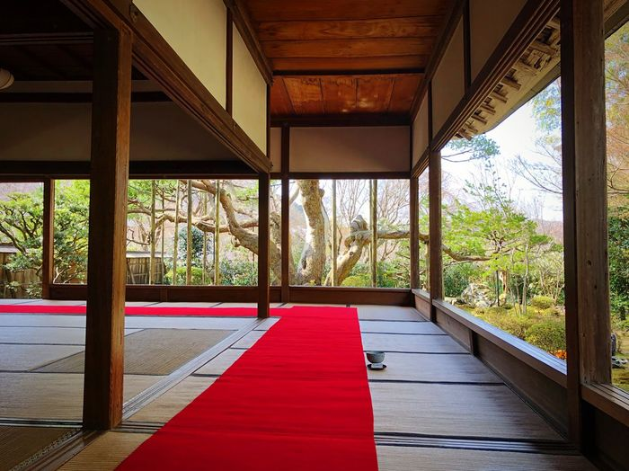 宝泉院 大原 Kyoto,japan Travel Destinations Tranquility Tranquil Scene Japan Photography Indoors  Architecture Built Structure No People Window Plant Tree Flooring Empty Wood - Material Architectural Column Nature