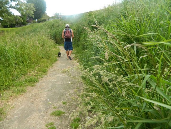 Strollsx Walks IrenesPics No Fliter  Nature