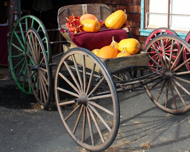Pumpkins On Cart
