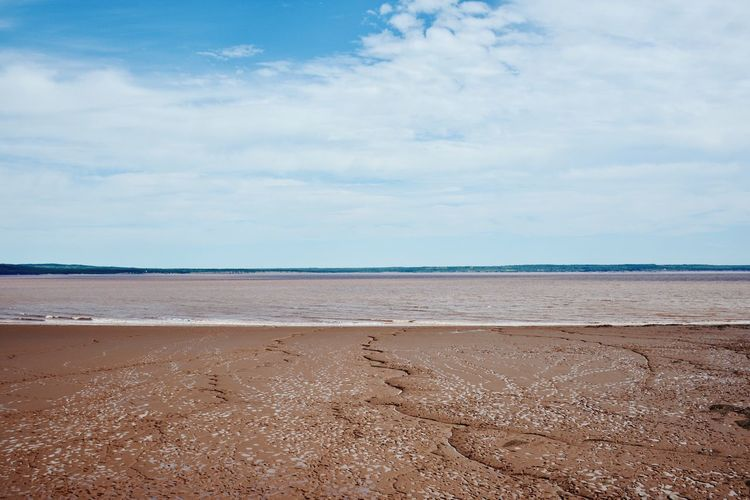 Beach Sea Sand Shore Horizon Over Water Sky Water Tranquil Scene Cloud Coastline Tranquility Scenics Seascape Vacations Calm Beauty In Nature Blue Tourism Travel Destinations Summer Hopewell Rocks Photography