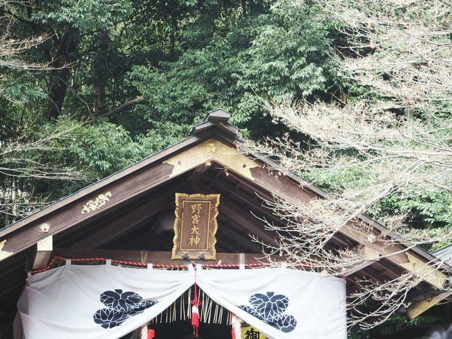 Happy New Year Shrine Kyoto,japan Beautiful Day Beautiful Nature Have A Nice Day♥