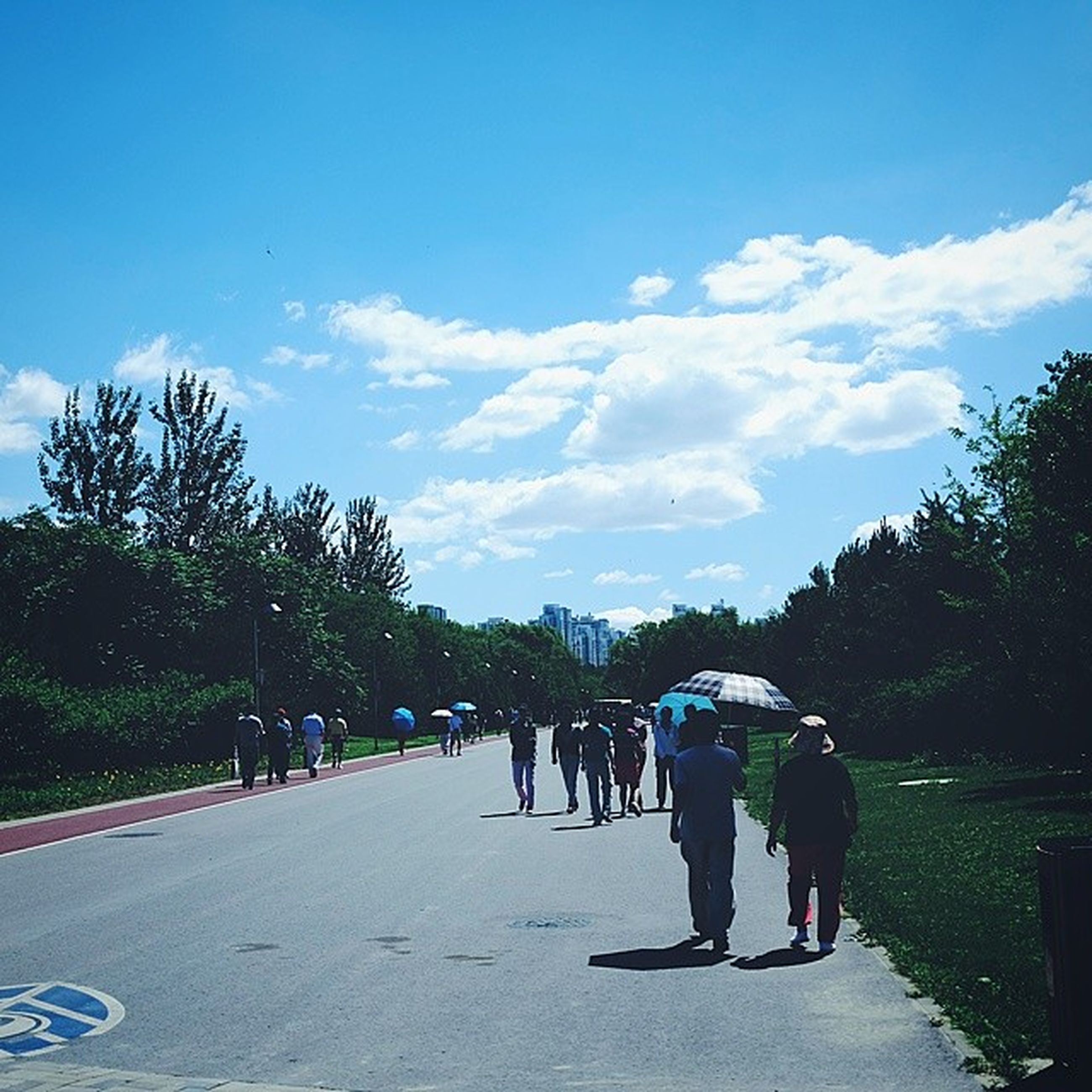tree, sky, men, lifestyles, leisure activity, person, walking, togetherness, full length, rear view, the way forward, cloud - sky, road, cloud, transportation, blue, large group of people, day