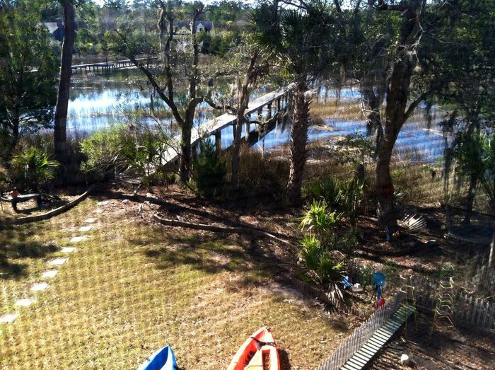 My life on the creek; a view from my deck Awendaw, South Carolina Creek Dock Enjoying Life Kayak Life On The Creek Nature Outdoors Perspective Photo Through The Screen South Carolina Tranquil Scene Tranquility Tree United States Walk To The Dock Water