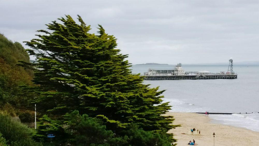 Sea Cloudy Day Beach Pier Summer Holiday End Of Summer End Of Season  End Of Holidays Grey Sky Grey Sea