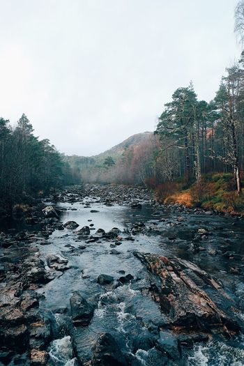 Glen Affric, Scotland, Highlands Beauty In Nature Mountain River Exploring Adventure Outdoors Highlands Glen Affric Scotland Sky Nature No People Water Tree Day Plant Outdoors Beauty In Nature Tranquility 2018 In One Photograph