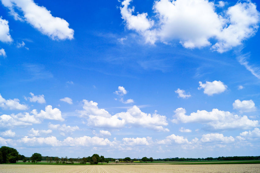 Beauty In Nature Blue Cloud Cloud - Sky Cloudscape Cloudy Day Field Grass Growth Horizon Over Land Idyllic Landscape Nature No People Non Urban Scene Non-urban Scene Outdoors Remote Rural Scene Scenics Sky The Great Outdoors - 2016 EyeEm Awards Tranquil Scene The Essence Of Summer