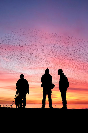 3 People Standing Together Be. Ready. Brighton Brighton Beach Murmuration Of Starlings Photographing Birds Starlings At Dawn Sunset_collection Beauty In Nature Clear Sky Full Length Men Murmurations Nature Orange Color Outdoors People Photographers Real People Silhouette Sky Starlings Putting Up A Show Sunset Togetherness