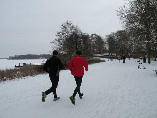 Two People Rear View Tree Winter Full Length Cold Temperature Togetherness Sky Outdoors Snow Nature People Day Beauty In Nature Friendship Adult Adults Only Frozen Ice Lake Bagsværd Sø - at Bagsværd Lake in Bagsværd, Denmark