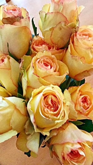 My daughter is so sweet 🌹 rRose - FlowerpPetalfFragilityfFreshnessfFlower HeadnNaturecClose-upnNo PeoplebBeauty In NatureiIndoors fFull FramebBackgroundsbBouquetdDay