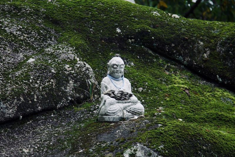 Buddha Enlightenment Meditation Nature Philosophy South Korea Tranquility Wisdom Beauty In Nature Buddha Figurine Buddhism Day Green Background Human Representation Korean Buddhism Mountains Nature No People Outdoors Rocks Sculpture Statue Tree