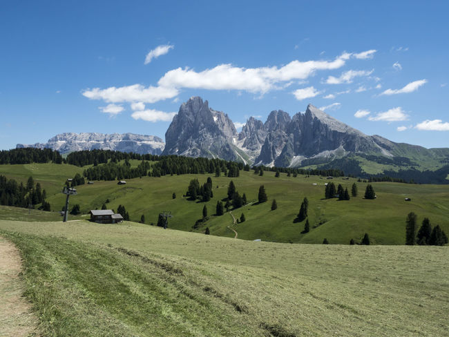 Snow Landscape Mountain Mountain Range Hiking Travel Mountain Peak Tourism Green Color Cloud - Sky Travel Destinations Beauty In Nature Outdoors Summer Tree Grass No People Nature Sky Day Dolomites, Italy Sella_gruppe Green Color Nature