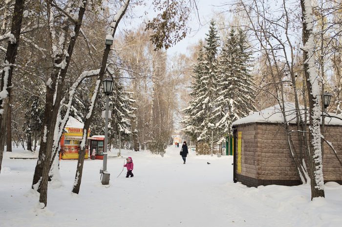 Central Park of Culture and Recreation - Nowosibirsk Central Park Cold Temperature Day Frost Frosty Leisure Activity Nature Novosibirsk Novosibirsk City Outdoors Park People Russia Siberia Snow Walk Walking Around Winter Winter