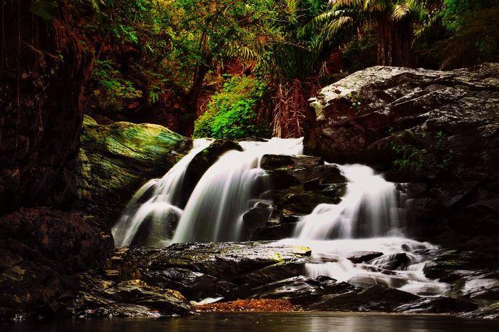 """Cascada """"Gallo de la Peña"""" #Pacto #Pichincha #Ecu #AllYouNeedIsEcuador Waterfall AllYouNeedIsEcuador Travel Photography Landscape_Collection Ecuador Travel Enjoying Life"""