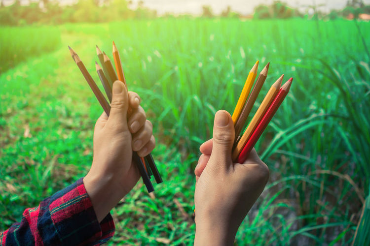 Cropped hands of man holding colored pencils
