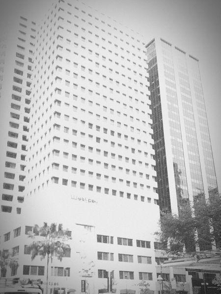 Buildings Brisbanecity