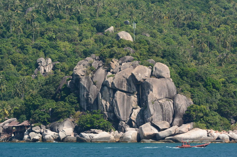 Koh Tao. Surat Thani. Thailand Koh Tao Thailand Thai Southeastasia Southeast Asia Amazing Thailand Asian  Water Rock Rock - Object Sea Tree Nature Waterfront Beauty In Nature Outdoors No People Tranquil Scene Scenics - Nature Beach Environment Ocean Nature Southern Thailand Boat Rocky Coastline Rock Formation Geology Stone Calm