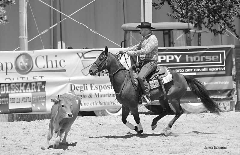 Monochrome Photography Blackandwhite Photography Animal EyeEm Best Shots Working Animal Riding Horse Equestrian Country Life Teampenning