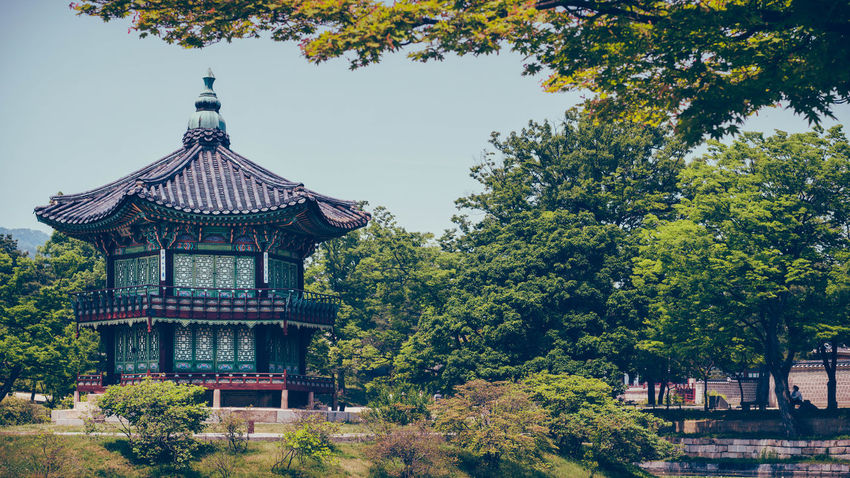 Architecture Asian Culture Beauty In Nature Building Exterior Built Structure Day Garden Garden Photography Growth Korea Korean Traditional Architecture Leaf Moat Nature No People Outdoors Pagoda Palace Palace Garden Royal Sky Temple Travel Destinations Travel Photography Tree