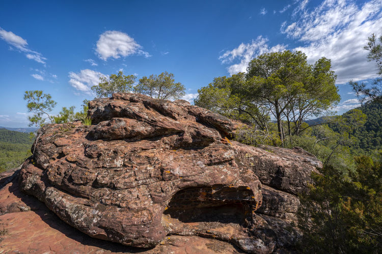 Rock formation amidst trees against sky