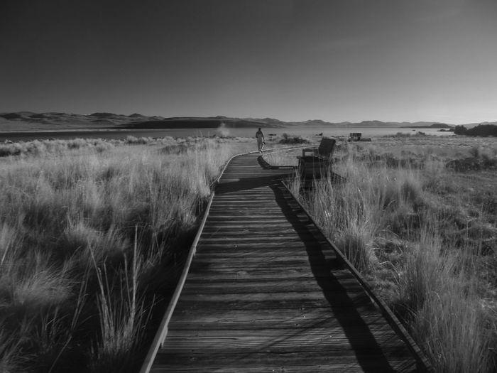 Serenity Tranquility Alone Time Alone Mono Lake California Mono Lake Nature Adventures In The City