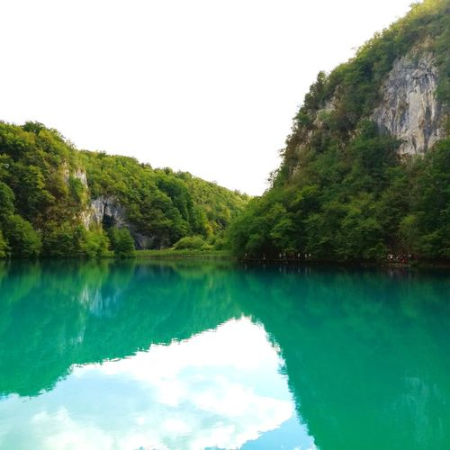 Water Tree Lake No People Sky Tranquility Nature Wather Reflection Beauty In Nature Day Mountain Lacs De Pitvicé Ciel Croatie