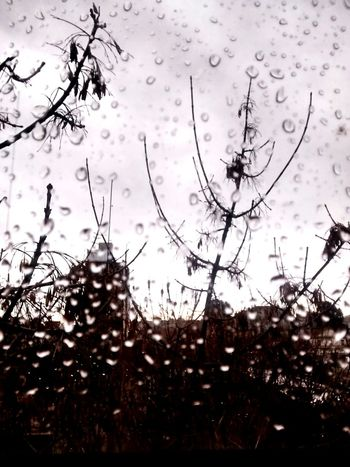 Buenosaires Photography House Balvanera Window City Rain