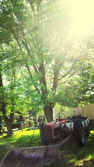 Summer Is Finally Here!:)