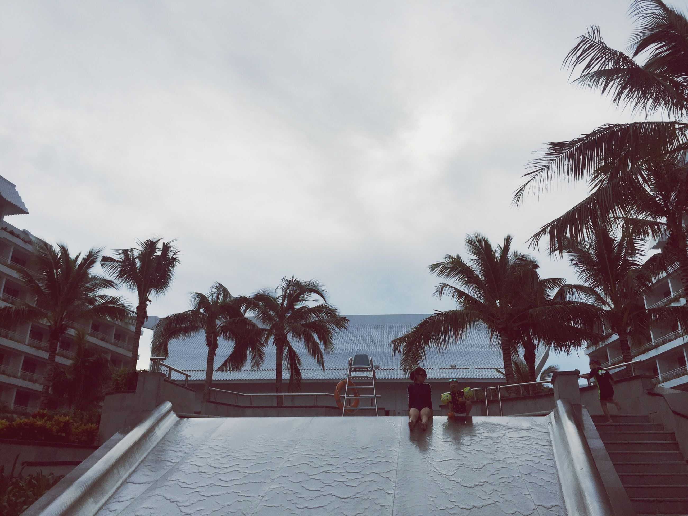 palm tree, sea, tree, water, swimming pool, beach, sky, tranquil scene, vacations, tranquility, scenics, nature, growth, tourism, cloud - sky, day, beauty in nature, coconut palm tree, outdoors, calm, tropical tree, shore, palm leaf, tourist resort, no people, ocean