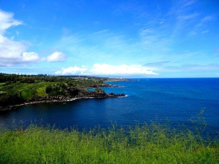 Island Life Island Hanging Out BlueHawaii Beach Maui Blue Sky Ocean View Deep Blue Sea Tropical Paradise Vacation Tourism Holiday Tropical Climate Heaven Nice View Sunny Day