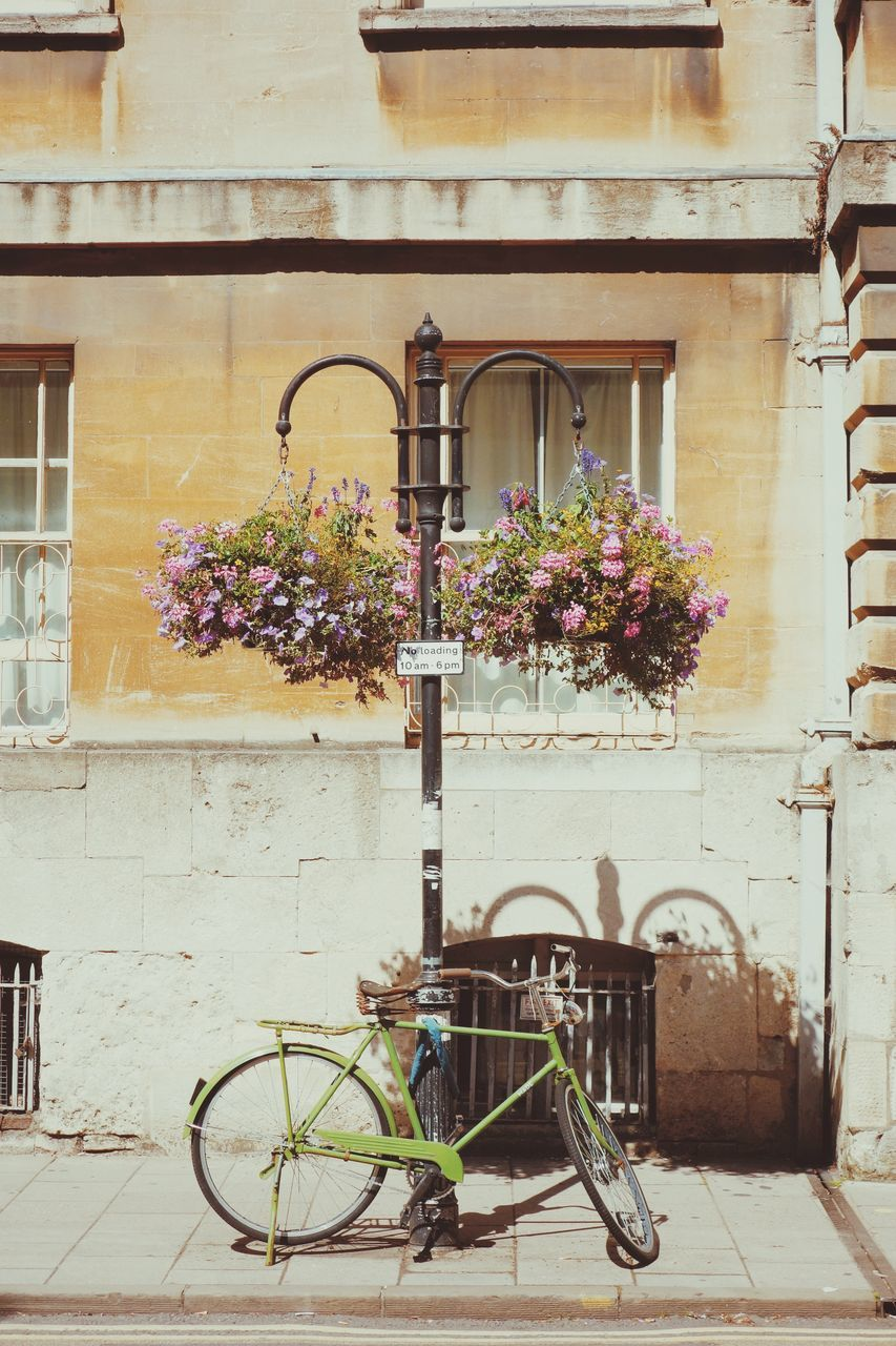 bicycle, architecture, building exterior, flower, transportation, built structure, mode of transport, window, no people, land vehicle, stationary, outdoors, day, old-fashioned, city