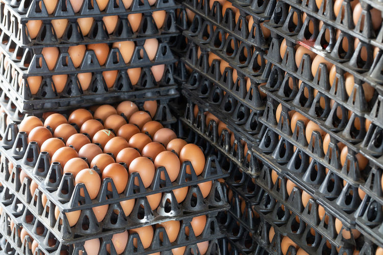 Full frame shot of eggs on cartons